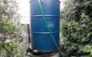 Полив огурцов в теплице по норме: как поливать правильно