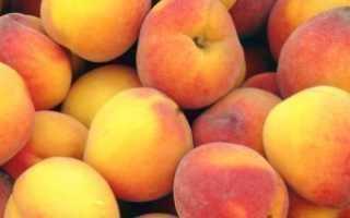 Когда созревают персики можно собирать с дерева ускорить созревание как определить спелость