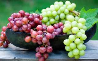 Виноград при диете и похудении можно ли есть калорийность