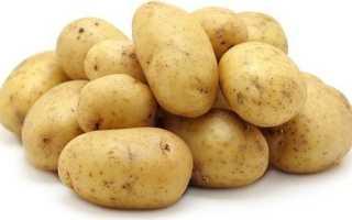Картофель Гала — характеристика сорта, отзывы, вкусовые качества