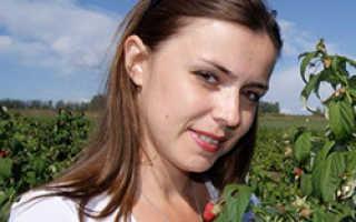 Железный купорос для винограда: применение, инструкция по обработке – как развести для опрыскивания весной