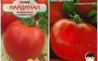 Кардинал характеристики и описание сорта томата
