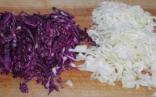 Лучшие сорта капусты для засолки и хранения: овощ для квашения на зиму, как выбрать белокочанную капусту, какие существуют поздние сорта
