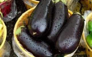 Польза, вред, калорийность на 100 грамм баклажанов