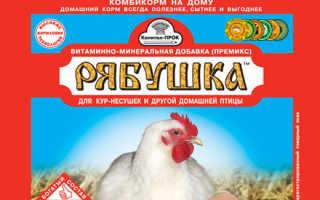 Витамины для цыплят в первые дни жизни – биосупервит инструкция