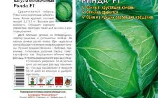 Капуста Ринда F1 описание и характеристика сорта достоинства и недостатки особенности выращивания когда сеять семена
