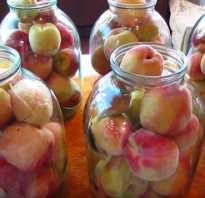 Закатать персики целыми. Рецепты приготовления компотов из персиков без стерилизации на зиму