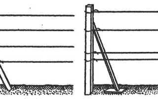 Шпалера для винограда устройство одноплоскостных двухплоскостных