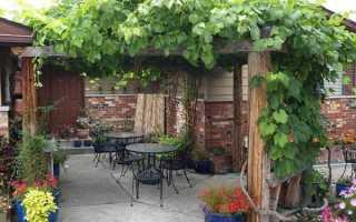 Перголы в саду. Как сделать перголу из дерева своими руками – арка для винограда и вьющихся растений