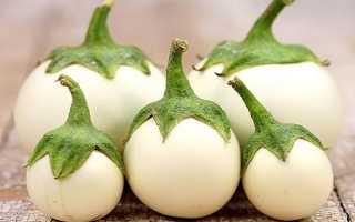 Белые баклажаны — описание сортов