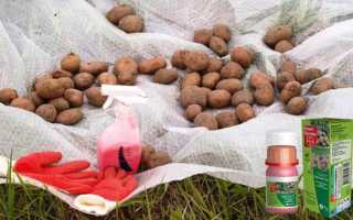 Препарат Престиж для обработки картофеля инструкция