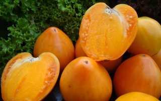 Томат «Хурма»: описание сорта и рекомендации по выращиванию
